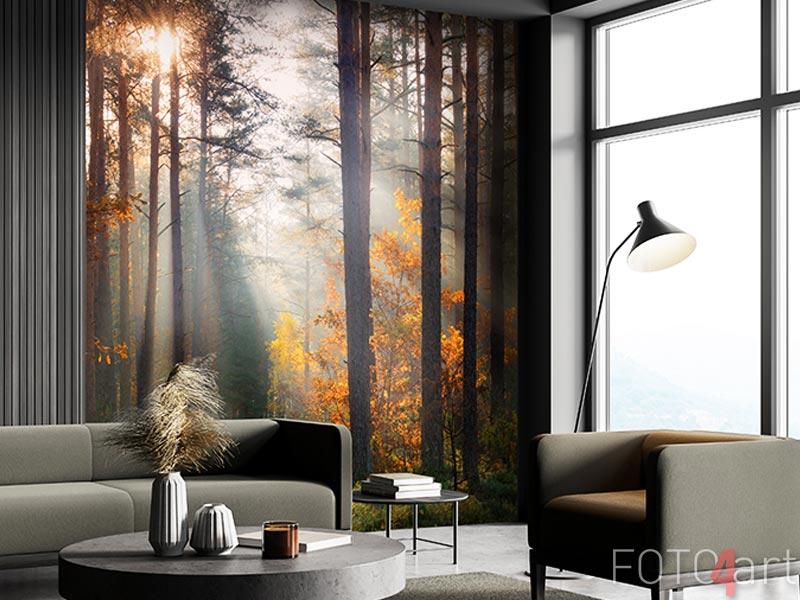 Fotobehang - Fall forest
