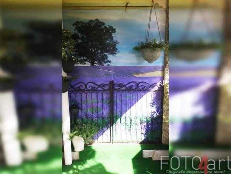 Foto op Tuinposter Lavendel