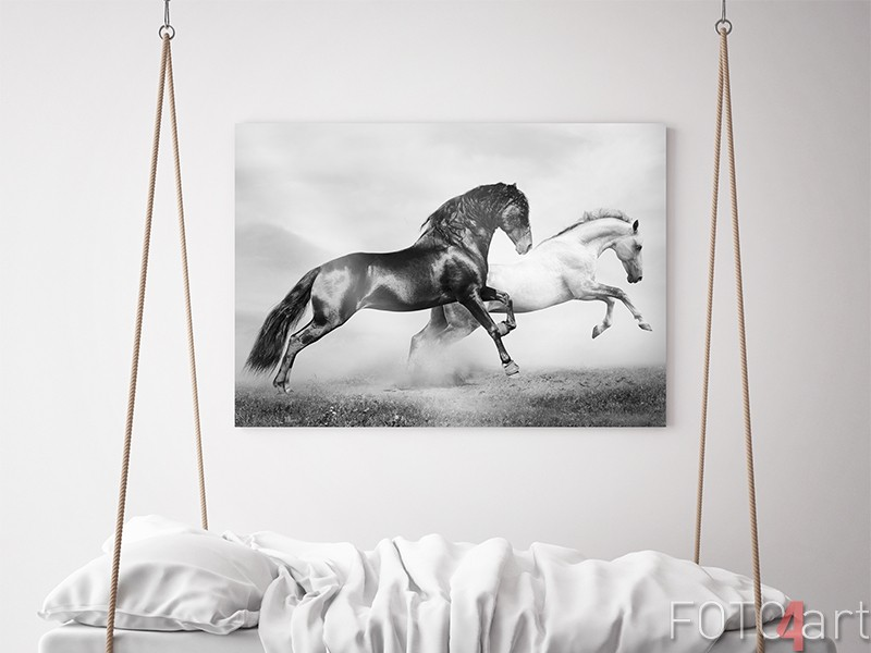 Paarden in galop op aluminium