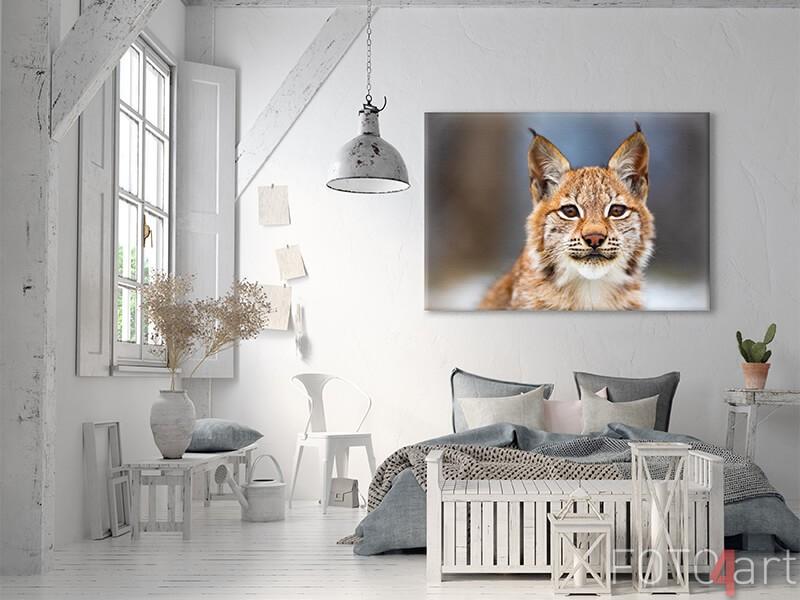 Lynx op canvas