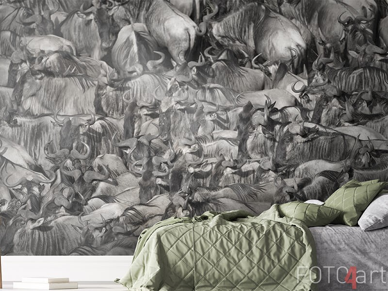 Fotobehang met kudde gnoes