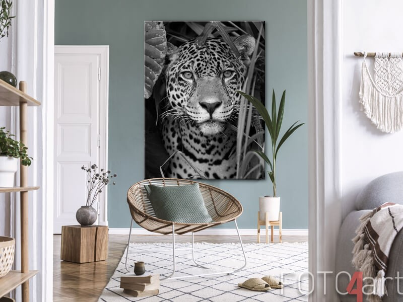 Jaguar op canvas