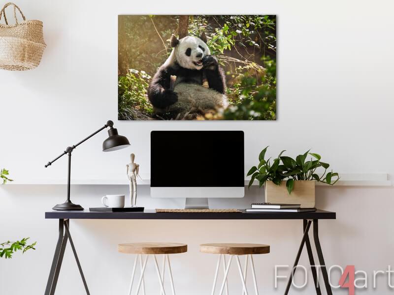 Panda op aluminium