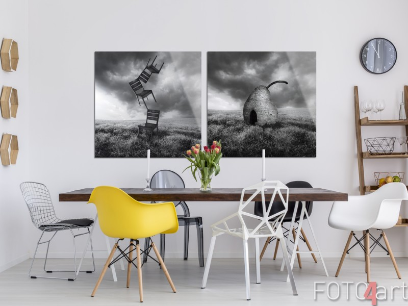 Foto Combi Surrealisme op Plexiglas