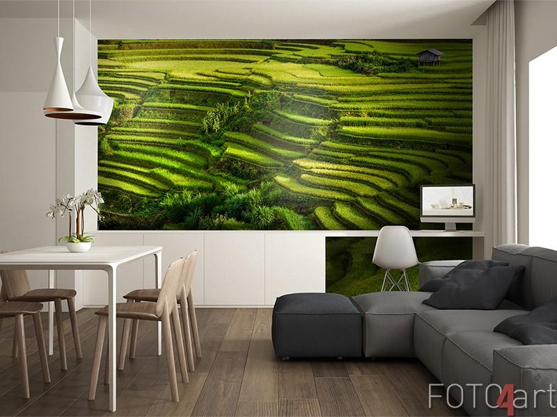 Fotobehang met rijstvelden