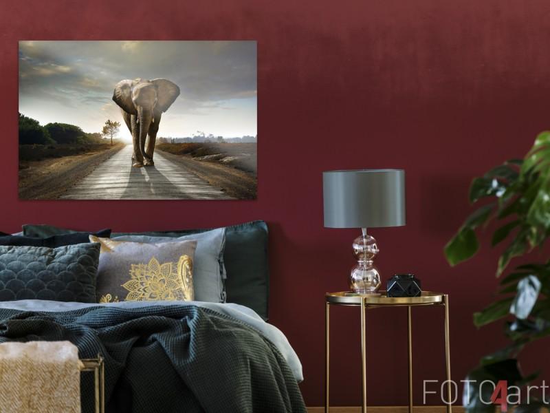 Slaapkamer met Foto Olifant op Plexiglas