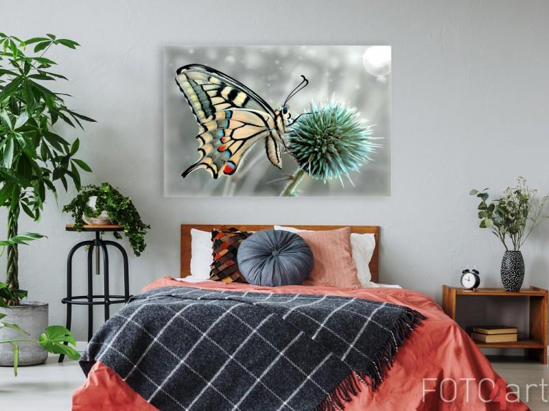 Slaapkamer met Foto van Vlinder op Canvas